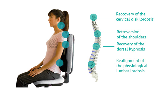 Komfort Cushion Preserve Your Posture Amp Your Health